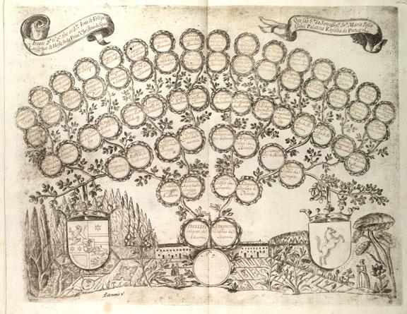 Arboles genealogicos creativos para rellenar - Imagui